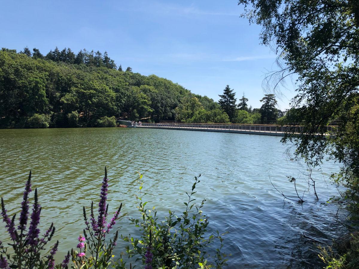 Promenade autour du lac de Savenay