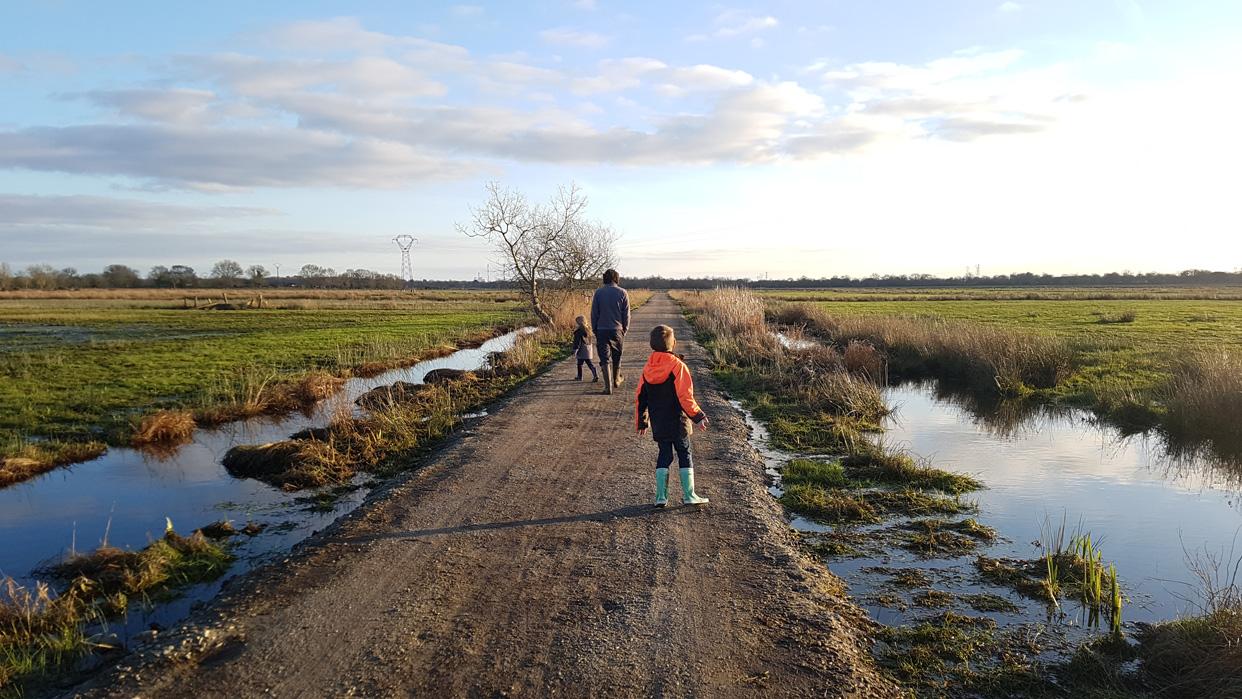 Bientôt un parcours de découverte des marais entre le lac de Savenay et le port de Lavau-sur-Loire